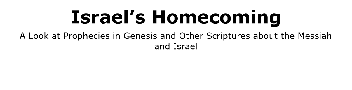 Israel's Homecoming title page snip
